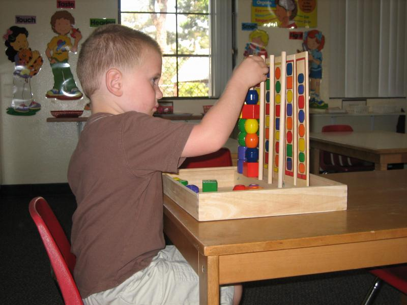 maria montessori discoveries mental concentration Learning is an exciting process of discovery, leading to concentration,  not only through mental  by dr maria montessori the discovery of the .